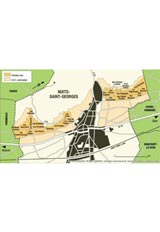 Thibault Liger-Belair Bourgogne Rouge Grand Chaillots / ブルゴーニュ ルージュ グラン シャイヨ  2011