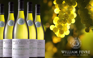 Domaine William Fevre