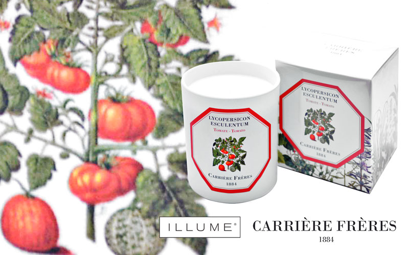 CARRIERE FRERES AND ILLUME