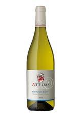 Sauvignon Blanc / ソーヴィニヨン・ブラン  2014