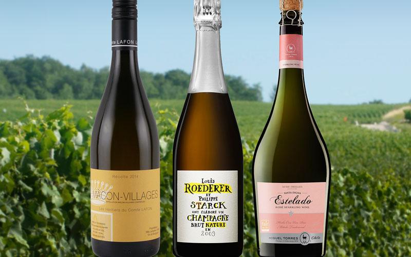 自然派&ビオディナミワイン