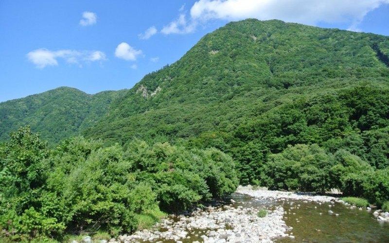 白神山地の水