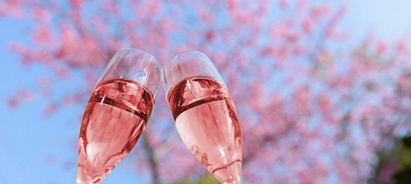 春の桜色ワイン