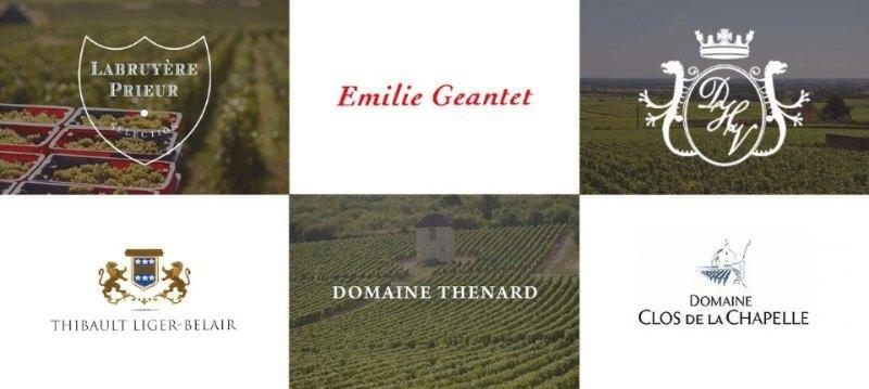 Bourgogne Selection